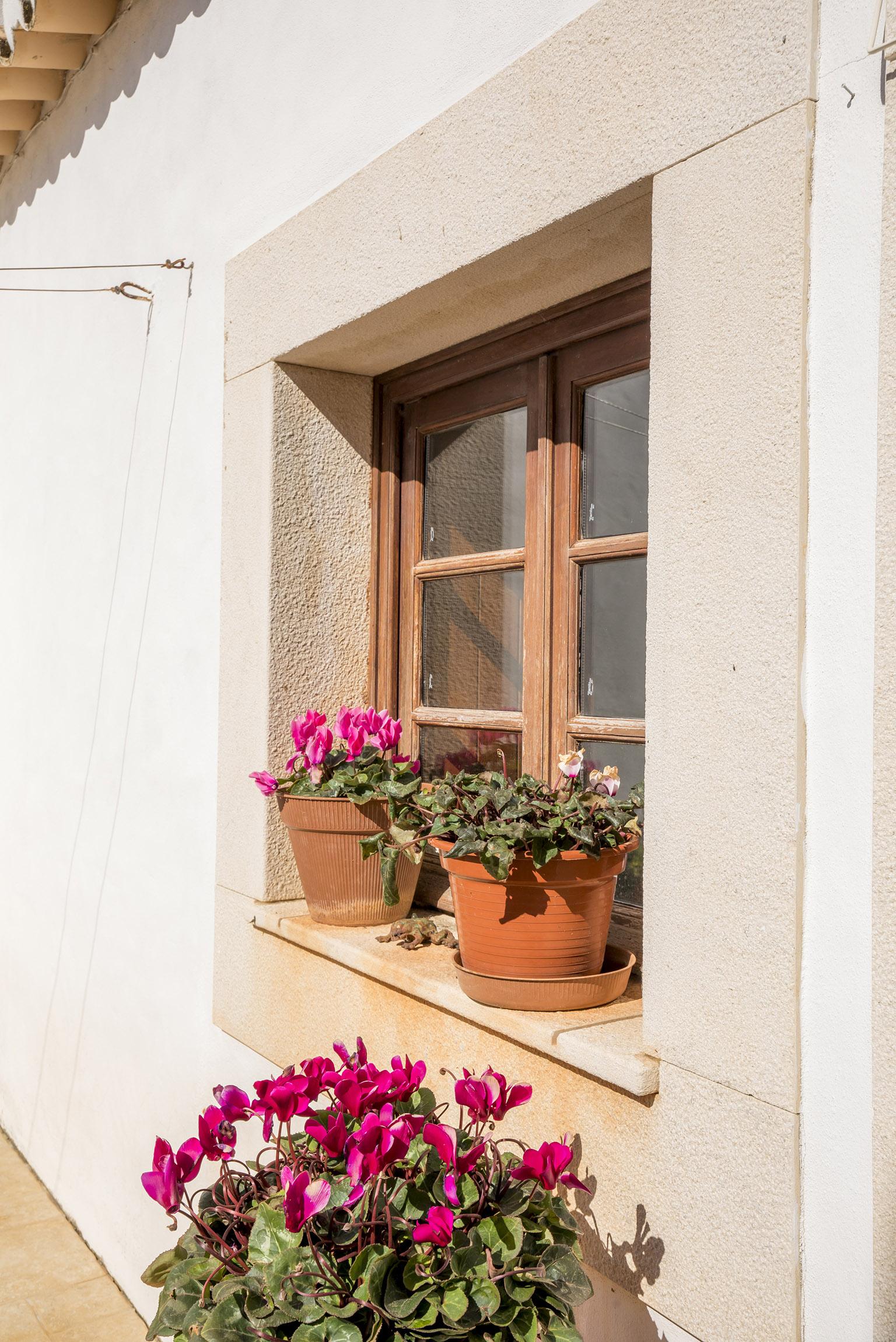 Apartment F - Casa do Garibaldi in Quinta das Alagoas photo 22521340